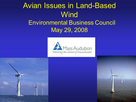 Avian Issues in Land-Based Wind Environmental Business Council May 29, 2008.