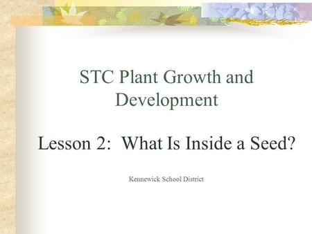 STC Plant Growth and Development Lesson 2: What Is Inside a Seed? Kennewick School District.