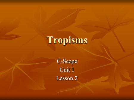 Tropisms C-Scope Unit 1 Lesson 2. How do plants grow? From seeds or other plant parts From seeds or other plant parts They grow to continue species They.