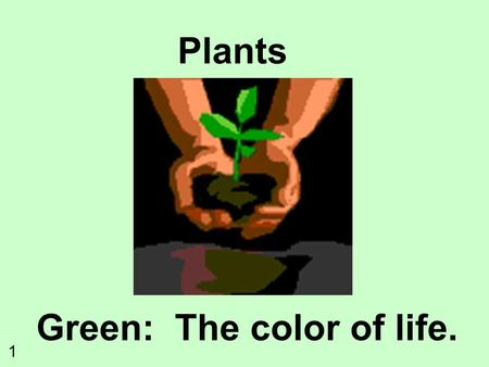 Plants Green: The color of life. 1. What do plants need to survive? SunlightWater and Minerals Gas Exchange CO 2 O2O2 Movement of Water and Nutrients.