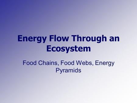 Energy Flow Through an Ecosystem Food Chains, Food Webs, Energy Pyramids.