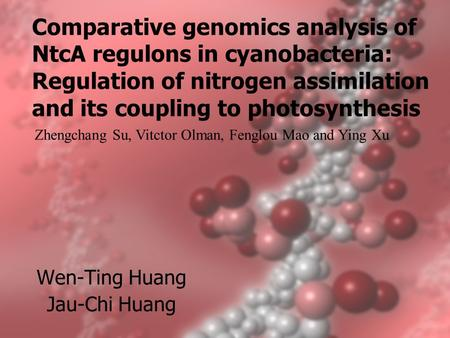 Comparative genomics analysis of NtcA regulons in cyanobacteria: Regulation of nitrogen assimilation and its coupling to photosynthesis Wen-Ting Huang.