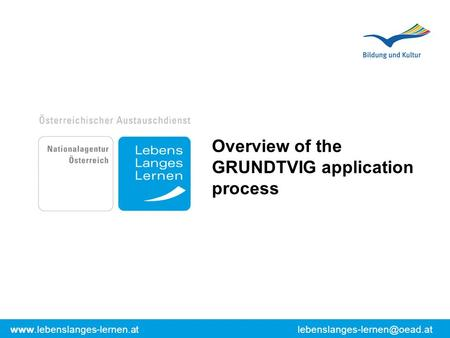 Overview of the GRUNDTVIG application process.