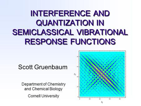 INTERFERENCE AND QUANTIZATION IN SEMICLASSICAL VIBRATIONAL RESPONSE FUNCTIONS Scott Gruenbaum Department of Chemistry and Chemical Biology Cornell University.
