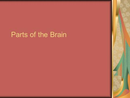 Parts of the Brain. Three parts of the brain Hindbrain (lower) Mid brain Forebrain (upper)