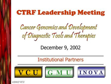 © 2002 VCU CTRF Leadership Meeting December 9, 2002 Institutional Partners V C U G M U I N O V A.