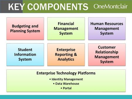 Budgeting and Planning System Financial Management System Human Resources Management System Student Information System Enterprise Reporting & Analytics.
