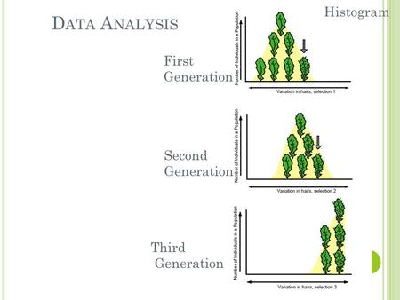 D ATA A NALYSIS Histogram Second Generation Third Generation First Generation.