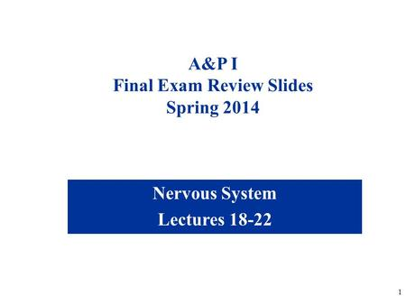 1 A&P I Final Exam Review Slides Spring 2014 Nervous <strong>System</strong> Lectures 18-22.
