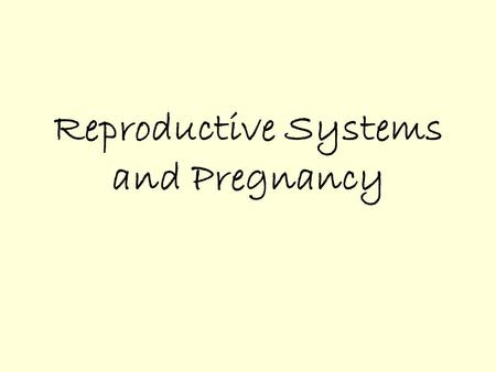 Reproductive Systems and Pregnancy