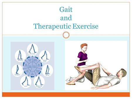 Gait and Therapeutic Exercise. Gait Cycle The gait cycle can be described in the phase terms of initial contact, loading response, midstance, terminal.