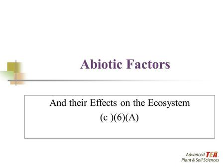 Abiotic Factors And their Effects on the Ecosystem (c )(6)(A)