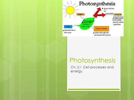 Photosynthesis Ch. 2.1 Cell processes and energy.