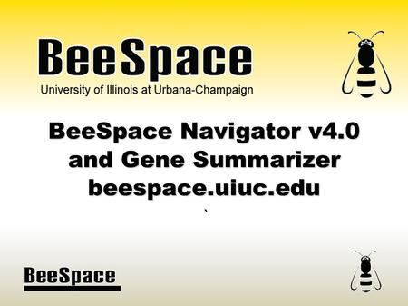 University of Illinois at Urbana-Champaign BeeSpace Navigator v4.0 and Gene Summarizer beespace.uiuc.edu `