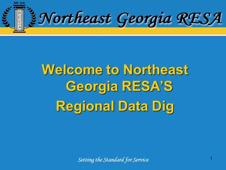 Setting the Standard for Service 1 Welcome to Northeast Georgia RESA'S Regional Data Dig.