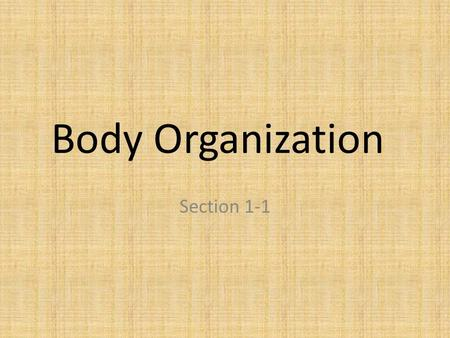 Body Organization Section 1-1. Cells, Tissues, Organs A group of cells working together is called a tissue There are four major types of tissue: – Muscle.