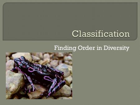Finding Order in Diversity.  Scientist have named about 1.5 million species  However, it is estimated that there still are 2- 100 million additional.
