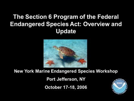 The Section 6 Program of the Federal Endangered Species Act: Overview and Update New York Marine Endangered Species Workshop Port Jefferson, NY October.