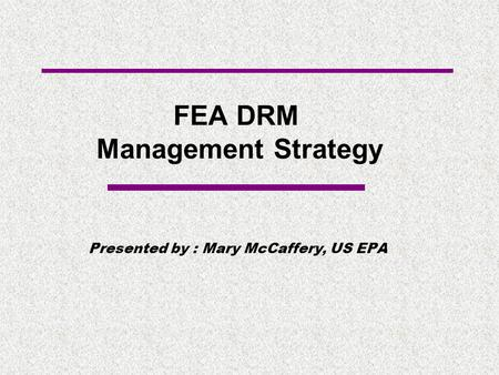 FEA DRM Management Strategy Presented by : Mary McCaffery, US EPA.