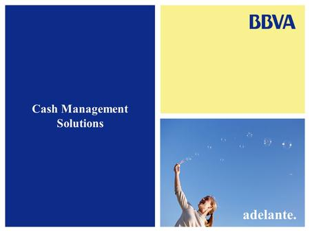 Cash Management Solutions adelante.. 1. Cash Concentration Iberian Cash Concentration Tax Implications Central Bank Reporting Advantages and Disadvantages.