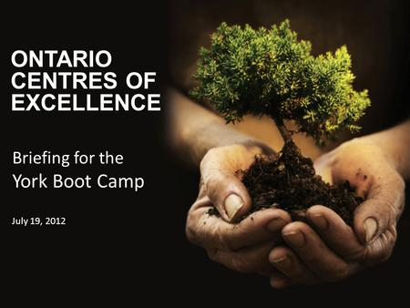 ONTARIO CENTRES OF EXCELLENCE Briefing for the York Boot Camp July 19, 2012.
