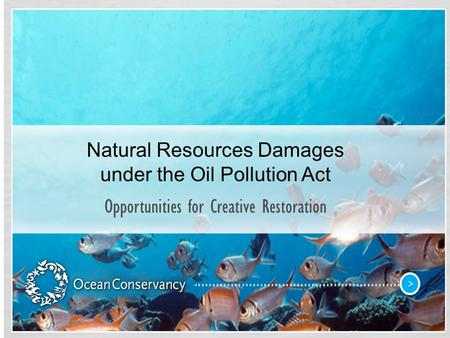 Natural Resources Damages under the Oil Pollution Act Opportunities for Creative Restoration.