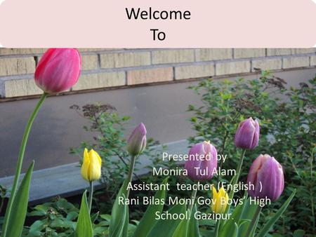 Welcome To Presented by Monira Tul Alam Assistant teacher (English ) Rani Bilas Moni Gov Boys' High School. Gazipur.