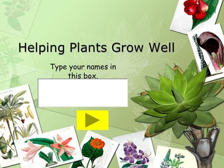 Helping Plants Grow Well Type your names in this box.