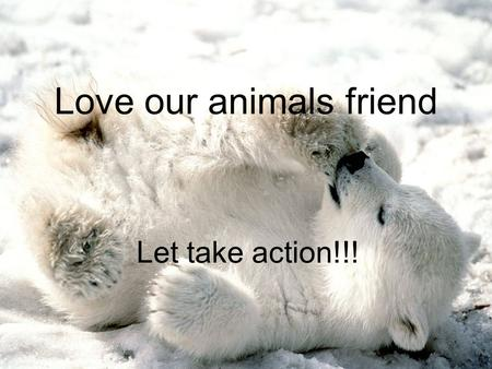 Love our animals friend Let take action!!!. animal Polar bears problem Many polar bears are facing a big problem. It is going to become extinct. But what.