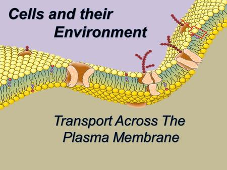 Let's look at one example involving osmosis. Osmosis is the diffusion of water across a semi permeable membrane such as a cell membrane. A semi permeable.