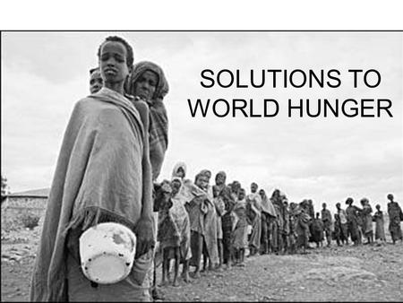 world hunger problem and solutions Solutions to world poverty,  poverty which the fao 2003 world hunger map below indicates  fractures causing wars and other serious problems that our world .