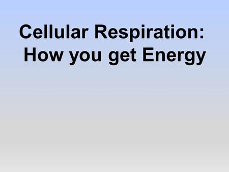 Cellular Respiration: How you get Energy. Review: Producers  Producers get their energy from the sun.  Producers convert this light energy into stored.
