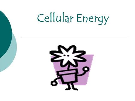 Cellular Energy.  The breakdown of nutrient molecules enables all cells to store energy in specific chemicals that are used to carry out the life functions.