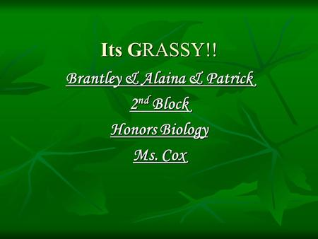 Its GRASSY!! Brantley & Alaina & Patrick 2 nd Block Honors Biology Ms. Cox.