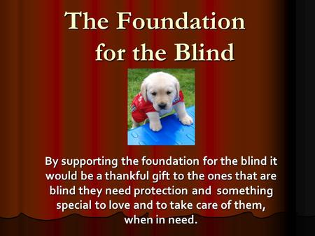 The Foundation for the Blind By supporting the foundation for the blind it would be a thankful gift to the ones that are blind they need protection and.
