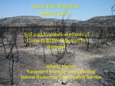 Oasis Fire Pipeline Spring 2011 Soil and Vegetation effects of Oasis Wildfire followed by drought Alfredo Muñoz Rangeland Management Specialist Natural.