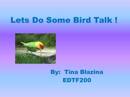 Lets Do Some Bird Talk ! By: Tina Blazina EDTF200.