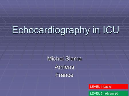 Echocardiography in ICU Michel Slama AmiensFrance LEVEL 1 basic LEVEL 2: advanced.