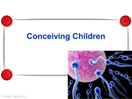 Conceiving Children © Robert J. Atkins, Ph.D.. When am I most fertile?  Fertility peaks around 20 – 24 years.
