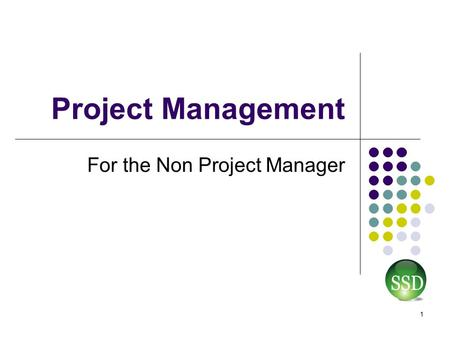 Project Management For the Non Project Manager 1.