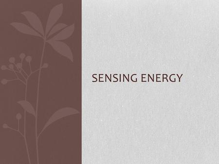 SENSING ENERGY. Cody Barnes 2 nd period Animal sense is infrasound SLIDE 1.