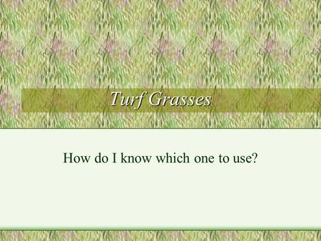 Turf Grasses How do I know which one to use?. Objectives Be able to name at least three turf grasses Describe characteristics of each Using a scenario,