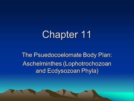 Chapter 11 The Psuedocoelomate Body Plan: Aschelminthes (Lophotrochozoan and Ecdysozoan Phyla)