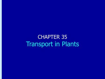 Chapter 35: Transport in Plants CHAPTER 35 Transport in Plants.