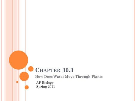 C HAPTER 30.3 How Does Water Move Through Plants AP Biology Spring 2011.