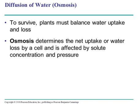 relationship among water potential solute and