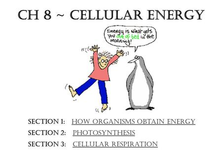 Ch 8 ~ Cellular Energy Section 1: How Organisms Obtain Energy