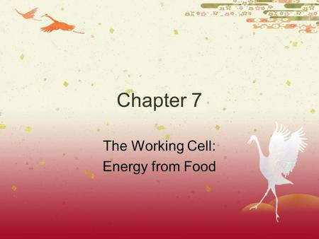 The Working Cell: Energy from Food