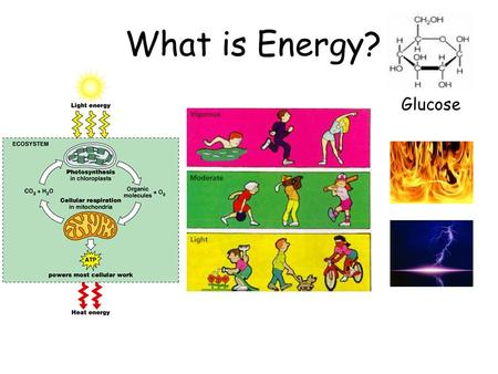 What is Energy? Glucose What is Energy? –ability to rearrange Molecules in chemical reactions –ability to do work Some definitions: