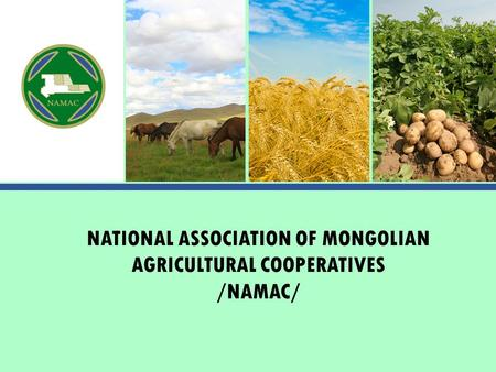 NATIONAL ASSOCIATION OF MONGOLIAN AGRICULTURAL COOPERATIVES /NAMAC/